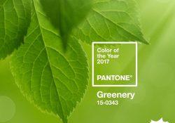 culoarea-anului-2017-pantone