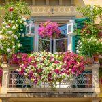 Am folosit jardinierele pentru a crea o gradina pe balcon