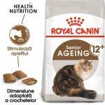 Tine cont de nevoile pisicii tale si hraneste-o doar cu hrana de calitate precum Royal Canin Pet